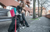 Fashionable woman and her border collie dog making shopping in the city center